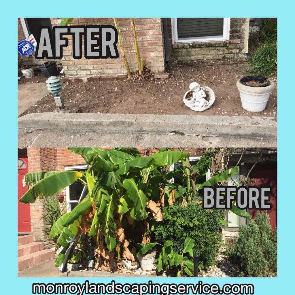 Cleaning Garden Garden design