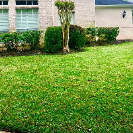 Professional mulch-sod-mowing services in: Pearland, Sienna Plantation, Meridiana, Bellaire, 77583,77584,77459,77401